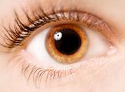 Eye Exam Step 9: Dilation